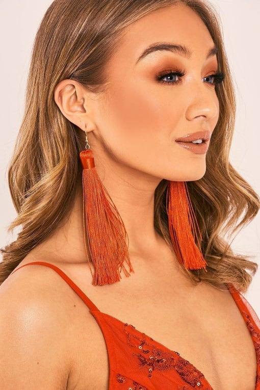 RED EXTREME TASSEL EARRINGS