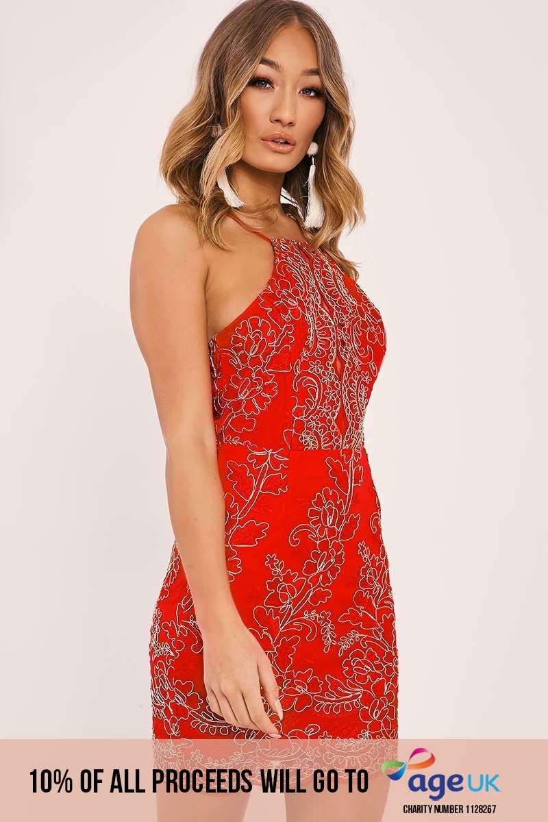 DYLANA RED FLORAL EMBROIDERED MINI DRESS
