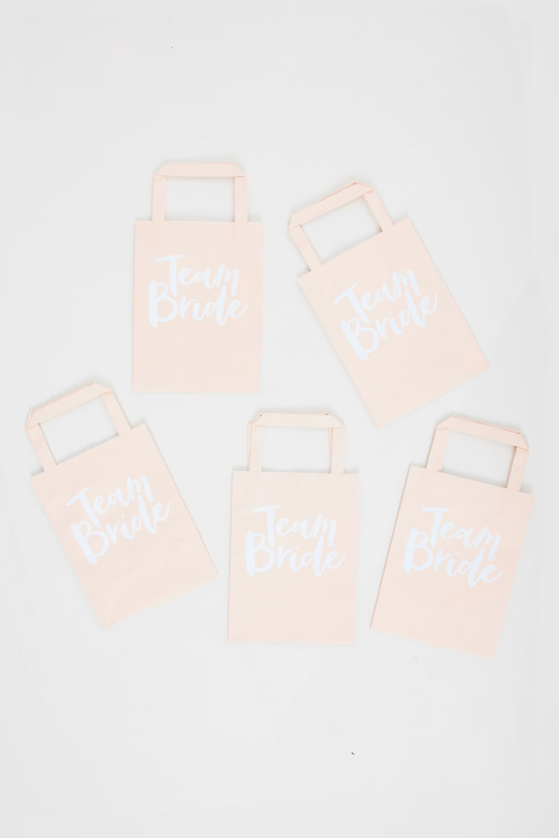 ray team bride blush party bags