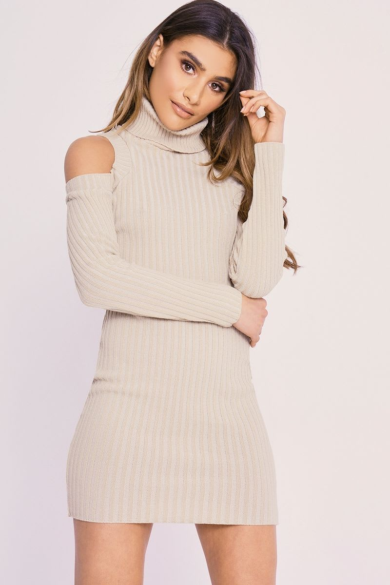 CHARLOTTE CROSBY STONE COLD SHOULDER ROLL NECK JUMPER DRESS